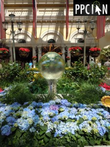 Vegas Bellagio Conservatory Garden