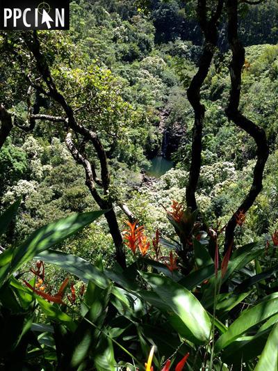 Maui Hawaii Waterfall